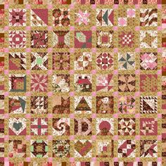 EQ6 Sampler Quilt in Pinks and Browns
