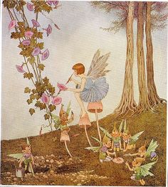 'Periwinkle Painting the Petals' - Ida Rentoul Outhwaite (from 'The Little Fairy Sister', 1923)