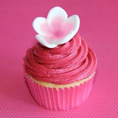 Coco Jo Cake Design: Hot Pink Cupcakes
