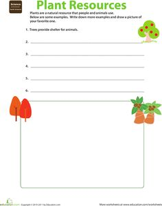 Worksheets: Natural Resources: Plants. (2nd grade w/s)