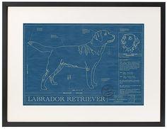 [Lab Cool] Labrador Retriever Blueprint   It's a Lab Thing
