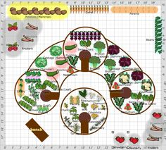 modified mandala plan, fantastic permaculture plan with guilds...