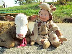 Sweet little calves ;)
