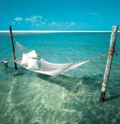 hammock on the water
