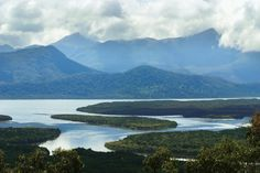 Hinchinbrook Island, Townsville is Australia's largest National Park island. There's plenty to see and do here from long sandy beaches, mangrove waterways to bushwalking and rainforests.