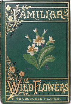 Familiar Wild Flowers by F. Edward Hulme