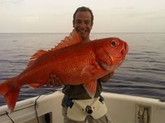 For the scenery, the people, and occasionally the fish, but most of all Robson Green - Extreme Fishing.