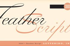 Feather Script by Lettering Inc - Desktop Font, WebFont and Mobile Font available at YouWorkForThem.