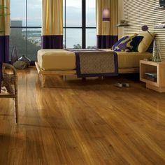 Hardwood to tile floor transitions on pinterest for Dog proof wood floors