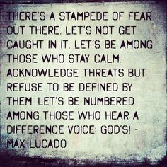 Max Lucado quote.  Amen! We were not created to live in fear! :)
