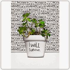 I will survive by *PrimerasNecesidades*