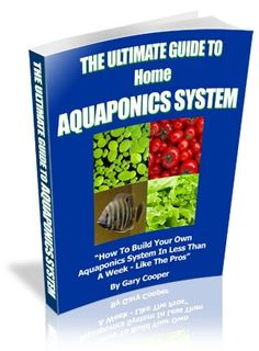 Easy To Understand Guide Shows You, How To Setup A Home Aquaponics System From Scratch! #Aquaponics #DIY