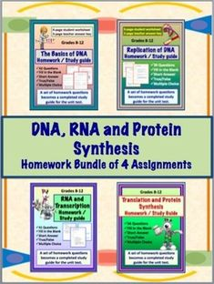 DNA (Deoxyribonucleic Acid), RNA, Protein Synthesis Homework Assignments - Set of Four