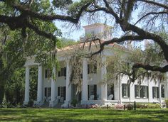 D'Evereux Plantation in Natchez, MS.....built 1840