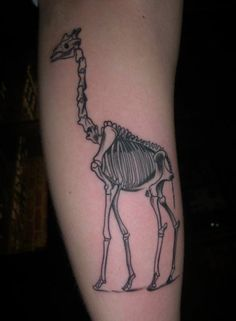 Giraffe skeleton tattoo tattoos News, Tattoos, Bones, Skeletons, Skeleton Tattoo, Dinosaurs, Giraff Skeleton, Ink, Giraffes