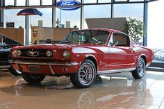 Ford Mustang 2+2 ´65