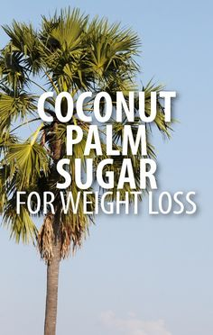 Dr Oz talked with real people about how and why using Coconut Palm Sugar as an alternative to sugar can help with weight loss and blood sugar stabilization. http://www.recapo.com/dr-oz/dr-oz-diet/dr-oz-coconut-palm-sugar-weight-loss-blood-sugar-stabilization/