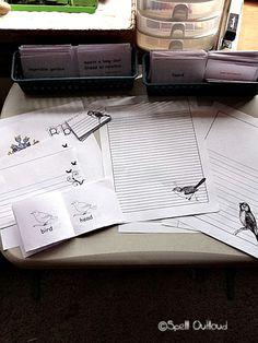 bird write, bird cards, bird unit, printabl