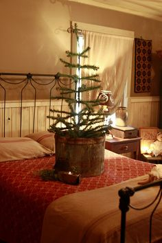 Prim Pine...tree in the bedroom, in an old wooden tub.  Magdalen Blue Photography:Cook's Primitive Christmas.