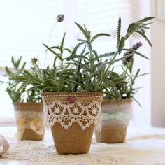 Dress up peat pots to create simple and inexpensive party or wedding favors.