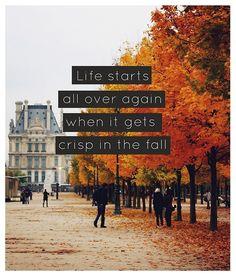 {falling for fall ... }