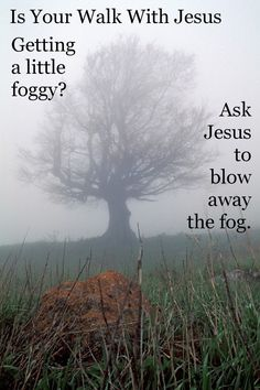Sometimes we just need to stop and ask #Jesus to blow away the fog in our lives..