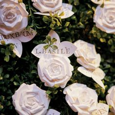 Paper rose escort cards // photo by: Blachere Virginie / Image Singuliere // http://www.theknot.com/weddings/album/a-luxurious-wedding-in-new-york-ny-117999///www.annmeyersignatureevents.com