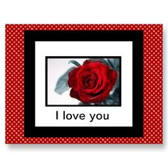 Red Rose I love you Post Card