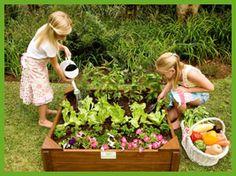 Kids Vegetable garden box, plant a simple four season garden