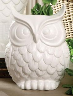 I found this at TJ Maxx for my Kitchen Bar! I am so excited. origami owl jewelry, decor, kitchen cabinet, owl vase, white, origamiowl, home kitchens, homes, owls