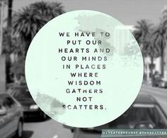 Wisdom. Where is it gathering in your life? #thebestyes @lysaterkeurst