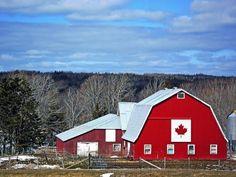 Canadian Barn