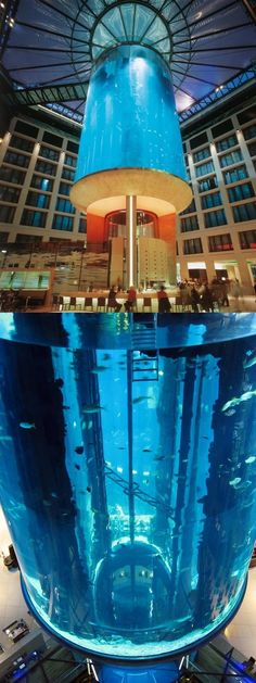 Cool.     The Radisson Blu Hotel in Berlin has a 1 million-litre aquarium tank that features a glass elevator inside, offering rides with 360-degree views of the 1,500 tropical fish.