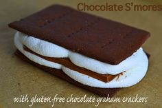 Gluten-free Chocolate Graham Crackers for S'mores