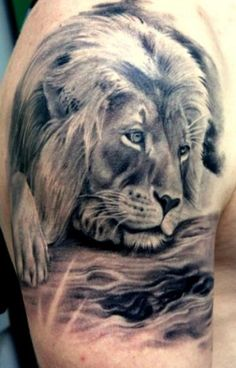 Lion tattoo i think this is my favorite because like my brother he is strong willed and intimidating but also sweet and humble and shows his love in a powerful way, this will probably be the one