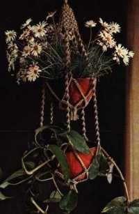 Knopen en plantjes ophangen