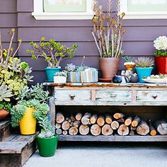 The all-container garden | Create a tableau | Sunset.com