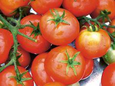 How To Freeze Tomatoes --> http://www.hgtvgardens.com/freezing/preserving-the-harvest-freezing-tomatoes?soc=pinterest