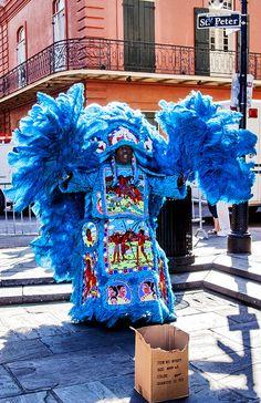 Mardi Gras Indian