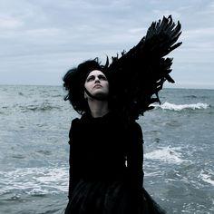 #black wings #dark