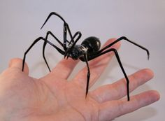 Glass Black Spider glass sculpture crafted using lampwork techniques. A great Halloween accessory for the ultimate in creepy decor. Very realistic black glass spider. Unique Halloween decorations. Handmade and American made and available on aftcra. http://aftcra.com/frozenflow/listing/4054/glass-spider