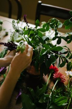 a daily something: Floral Experiments | Local Blooms in early July