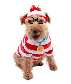 Where's Waldo Woof Pet Costume #halloween #costume #pets #animals