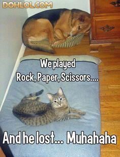 Rock, Paper, Scissors...