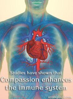 Compassion Enhances the Immune System