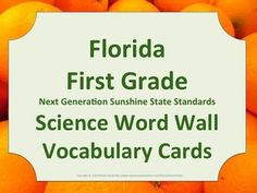 Florida Science Word Wall 1st First Grade Vocabulary NGSSS Aligned Orange Border