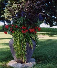 large container with fountain grass