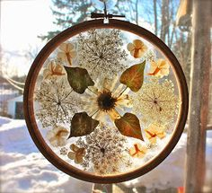 Twig and Toadstool: Mandala Sun Catchers