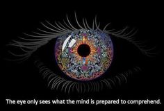 open your mind to the infinite beauty that surrounds you...