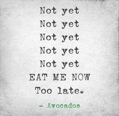 true... funni stuff, favourit quot, laugh, avocado, true, humor, thing
